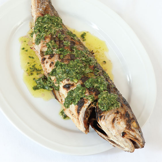 Grilled redfish recipes blog dandk for Red fish recipe