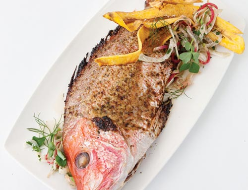 Whole Roasted Snapper With Mojo, Pickled Fennel Salad, Fried Plantains